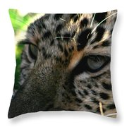 As Close As You Want To Get Throw Pillow