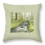 As I Sat By A Brook And Pondered Throw Pillow
