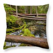 As The Creek Flows Throw Pillow