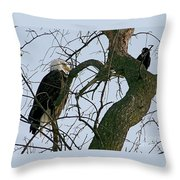 As The Eagle Looks On Throw Pillow