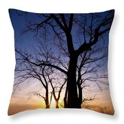 As Twilight Approaches Throw Pillow