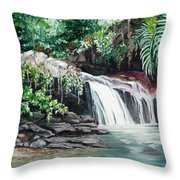 Asa Wright Falls      Sold Throw Pillow