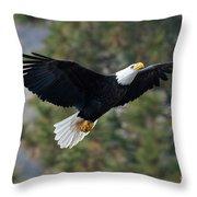 Ascent Throw Pillow