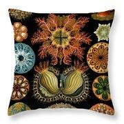 Ascidiae Throw Pillow