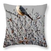 Ash-throated Flycatcher Throw Pillow