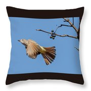 Ash-throated Flycatcher Flight Throw Pillow