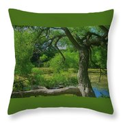 Ash Tree Throw Pillow