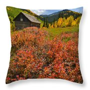 Ashcroft Cabin Throw Pillow