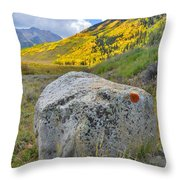 Ashcroft Colors Throw Pillow