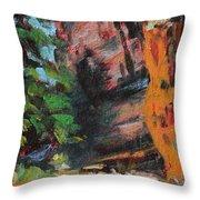 Ashdown Gorge Of Zion Throw Pillow