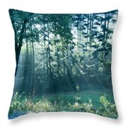 Ashenvale Forest Throw Pillow