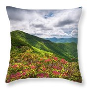 Asheville Nc Blue Ridge Parkway Spring Flowers North Carolina Throw Pillow