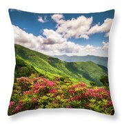 Asheville Nc Blue Ridge Parkway Spring Flowers Scenic Landscape Throw Pillow