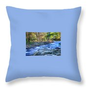 Asheville Stream Throw Pillow