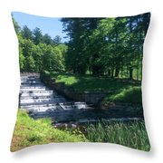 Ashland State Park 1 Throw Pillow
