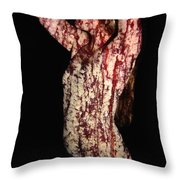 Ashley Throw Pillow by Arla Patch