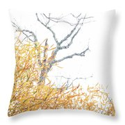 Asian In The South Throw Pillow