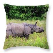 Asian Rhinoceros Throw Pillow