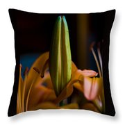 Asiatic Lily Throw Pillow