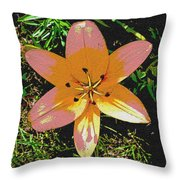 Asiatic Lily With Sandstone Texture Throw Pillow