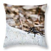 Asilid Resting Throw Pillow