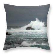 Asilomar Mini Seascape Throw Pillow