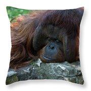 Asleep Throw Pillow