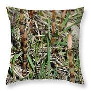 Asparagus In The Wild Throw Pillow