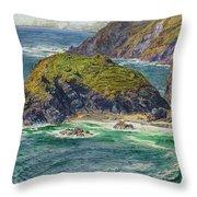 Asparagus Island Throw Pillow