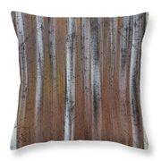 Aspen Abstract Vertical Throw Pillow