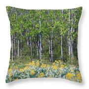 Aspen And Balsam Root Throw Pillow