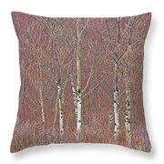 Aspen And Buckbrush Throw Pillow