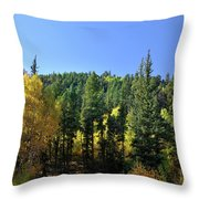 Aspen And Cottonwood In Concert Throw Pillow by Ron Cline