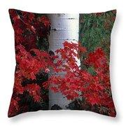 Aspen And Mountain Maple Throw Pillow