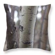 Aspen Bark Detail Throw Pillow