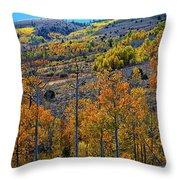 Aspen Cascades In The Sierra Throw Pillow