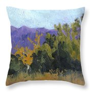Aspen Color Throw Pillow