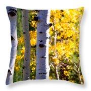 Aspen Color Throw Pillow