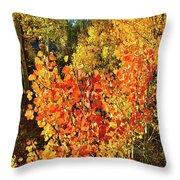 Aspen Colors In Dillon Colorado Throw Pillow