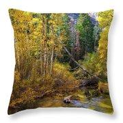 Aspen Dream Throw Pillow