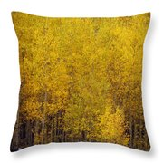Aspen Fall 2 Throw Pillow