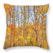 Aspen Fall Foliage Vertical Image Throw Pillow
