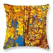 Aspen Glow Autumn Sky Throw Pillow