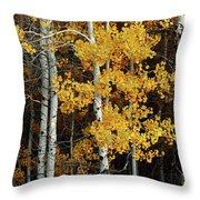 Aspen Gold Throw Pillow