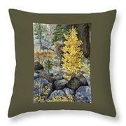 Aspen Gold Throw Pillow