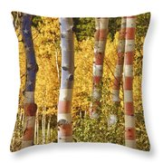 Aspen Gold Red White And Blue Throw Pillow