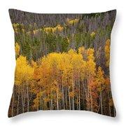 Aspen Grove Throw Pillow