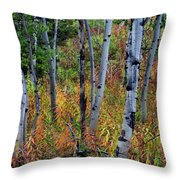 Aspen In Fall Throw Pillow