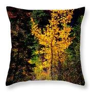 Aspen In Hope Valley Throw Pillow