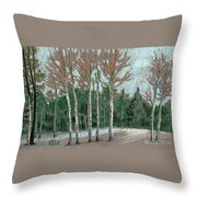 Aspen In The Snow Throw Pillow